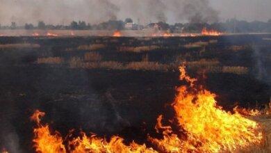 Photo of В Николаеве и области объявлена пожарная опасность наивысшего уровня