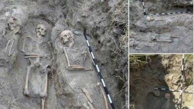 На Житомирщине нашли массовое захоронение жертв коммунистического режима   Корабелов.ИНФО