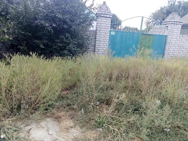 Photo of Амброзія, складування будматеріалів, спалювання опалого листя… В Корабельному районі провели «санітарний» рейд