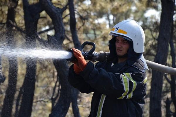 Photo of Спасатели вновь тушили пожар в Балабановском лесу