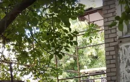 Photo of Строительные леса, с которых упала девочка в Корабельном районе, не были ограждены — жильцы утепляли фасады