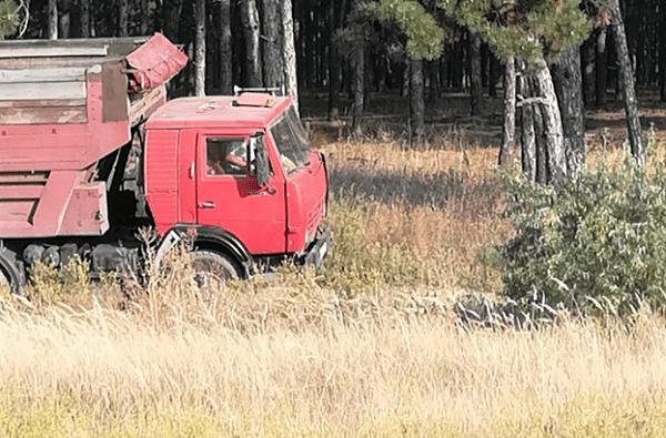 «Бесстрашный»: николаевец вывез мусор на грузовике в Балабановский лес | Корабелов.ИНФО