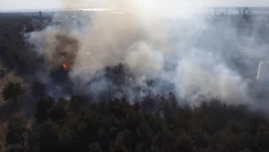 С высоты птичьего полета: появилось видео пожара в Балабановском лесу, случившегося 11 сентября | Корабелов.ИНФО