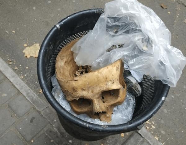 Photo of «По предварительным выводам, череп является древним», — полиция открыла дело по факту страшной находки в Николаеве