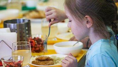 Николаевское гороно объявило торги на организацию питания в детсадах и школах в 2020 году на ₴93,5 млн | Корабелов.ИНФО