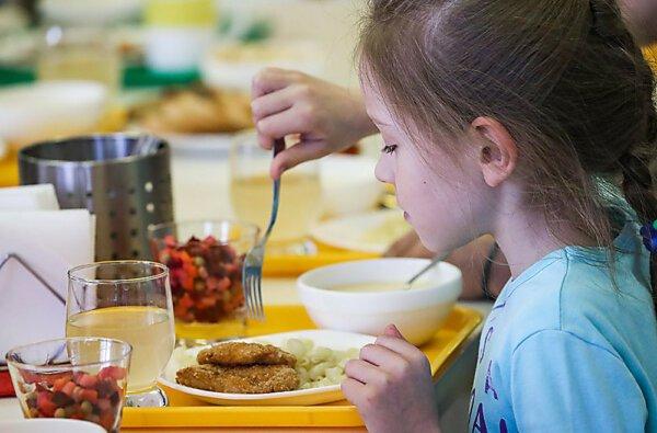Николаевское гороно объявило торги на организацию питания в детсадах и школах в 2020 году на ₴93,5 млн   Корабелов.ИНФО