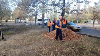 Згрібання листя, прибирання доріг і зупинок, знесення дерев: про санітарне очищення Корабельного району з 4 по 8 листопада   Корабелов.ИНФО image 3