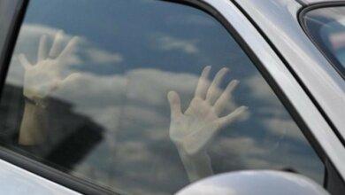 Начал душить и пытался изнасиловать: водитель напал на попутчицу в Витовском районе   Корабелов.ИНФО
