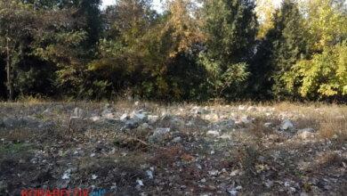 Photo of Объявлены тендеры на очистку Корабельного района за почти 6 миллионов