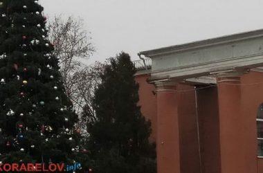 Новогодняя елка в Корабельном районе