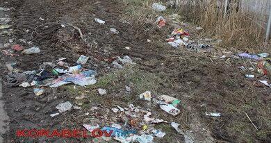 Из Балки - в свалку: ранее живописные места Корабельного района утопают в мусоре (ВИДЕО)   Корабелов.ИНФО image 1