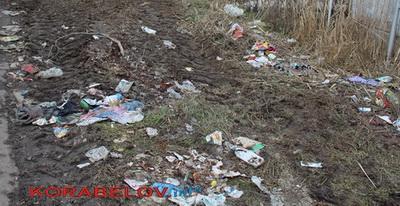 мусор у широкобальского кладбища