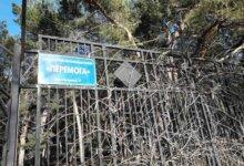 Photo of «Знал бы Юрий, что так будет выглядеть улица его имени», — николаевец пожаловался на горы мусора в Корабельном районе