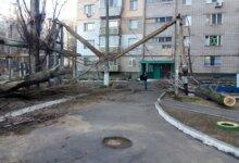 Photo of «Прибрано 169 дерев, відновлено електро- та теплопостачання», – адміністрація Корабельного району про ліквідацію наслідків негоди