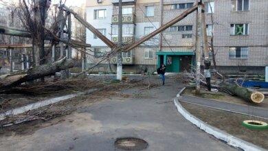 Photo of «Прибрано 169 дерев…», – адміністрація Корабельного району звітувала про ліквідацію наслідків негоди