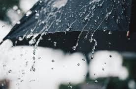 До +14º и дождь: погода в Николаеве в первое февральское воскресенье | Корабелов.ИНФО