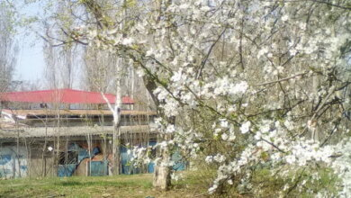 Photo of Со вторника в Николаеве ожидается похолодание