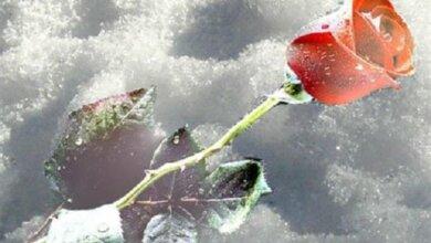 Період високих температур закінчується: миколаївцям обіцяють інтенсивне похолодання найближчими днями | Корабелов.ИНФО
