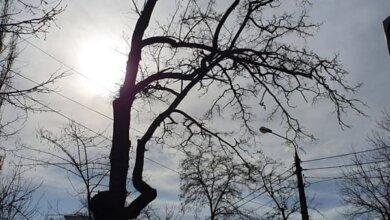 Photo of Погода 4 марта в Николаеве побила 19-летний рекорд