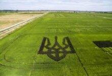 Photo of Рада проголосовала за свободный рынок земли в Украине