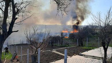 Photo of В Корабельном районе подожгли камыш – от огня удалось спасти жилые дома