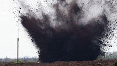 На военном полигоне в Николаевской области подорвался пастух | Корабелов.ИНФО