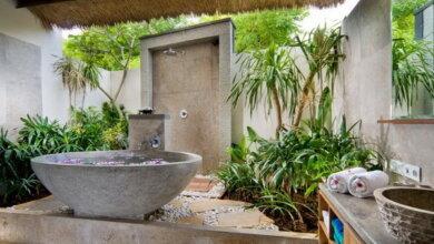 Photo of Секреты озеленения для ванной комнаты: растения и идеи дизайна