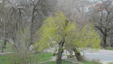 Photo of Поривчастий вітер, можливі грози… Прогноз погоди на вихідні у Миколаєві
