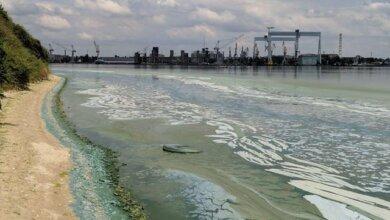 """Photo of """"Зеленая вонючая жижа добралась до Николаева"""", - горожане возмущены загрязнением реки"""