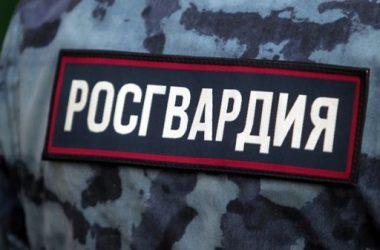 В России спецназ застрелил подозреваемого в краже обоев   Корабелов.ИНФО