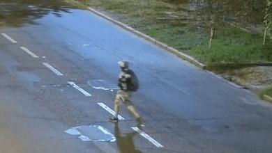 Тату на лівій нозі: Миколаївський універ розшукує злочинця, який вкрав у них дерева | Корабелов.ИНФО