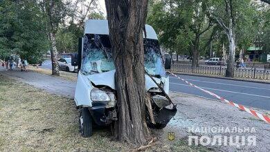 «Маршрутка», ехавшая из Корабельного района, врезалась в дерево: девять пострадавших (Видео) | Корабелов.ИНФО image 1