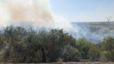 В Корабельном районе более трех часов тушили пожар, возникший из-за поезда   Корабелов.ИНФО image 2