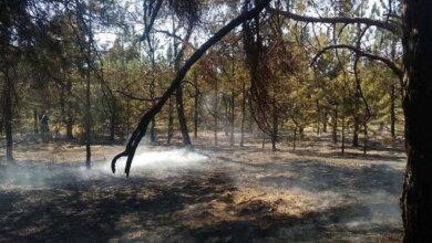 Photo of Знову підпал: рятівники гасили чергову пожежу в Балабанівському лісі