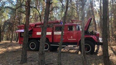 Photo of Николаевские спасатели снова тушат пожары в Балабановском лесу