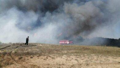 Photo of Пожар возле Галицыновских дач