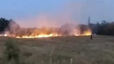 Видео пожара на большой территории в Корабельном районе | Корабелов.ИНФО