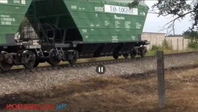 Photo of Сигналил более 10 минут: поезд надолго перекрыл движение в Корабельном районе (видео)
