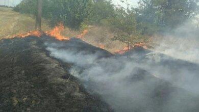 Photo of Неизвестные подожгли Балабановский лес — горело 2500 кв.м.