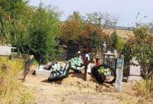 "на ""Жуковском"" кладбище хоронят на дороге"