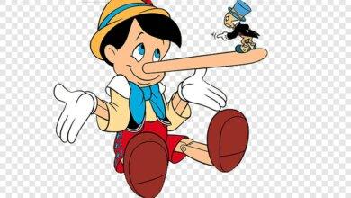 «Превратился в брехливого чинушу»: экс-руководитель избирательной кампании Сенкевича обвинил его во лжи | Корабелов.ИНФО