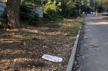"""""""Давно не видела руки коммунальных служб"""",- жители жалуются на неубранную территорию возле сквера """"Комсомольский""""   Корабелов.ИНФО image 7"""