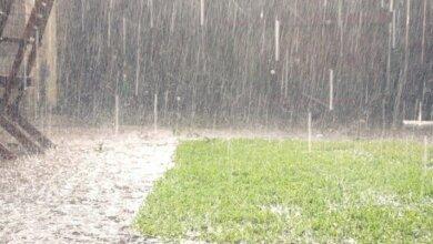 Дощі різної інтенсивності: погода на Миколаївщині у найближчі три доби | Корабелов.ИНФО
