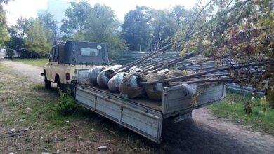 Photo of В Корабельному районі висадили 33 дерева