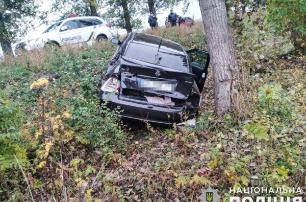 В Николаевской области пьяный водитель «Опеля» сбил подростка и вылетел в кювет   Корабелов.ИНФО