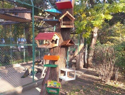 В Николаевском зоопарке открыли «Ресторан «Птицерия» | Корабелов.ИНФО image 2