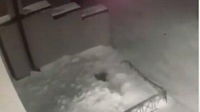 Photo of В России 6-летняя девочка вылетела из окна четвёртого этажа, встала и пошла обратно в дом (видео)
