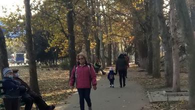 Photo of COVID на Николаевщине: 462 новых больных, 3 смерти за сутки