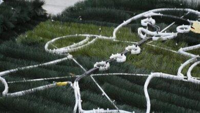 На главной площади Николаева устанавливают праздничную елку | Корабелов.ИНФО image 5
