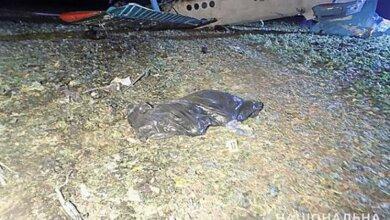 В Тернопольской области разбился самолёт - погибший пилот был жителем Николаевщины (Видео) | Корабелов.ИНФО